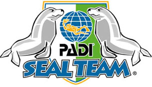 seal team logo